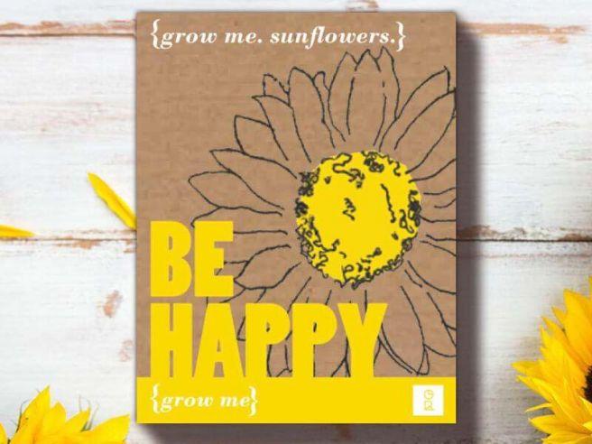 Be Happy Zonnebloem