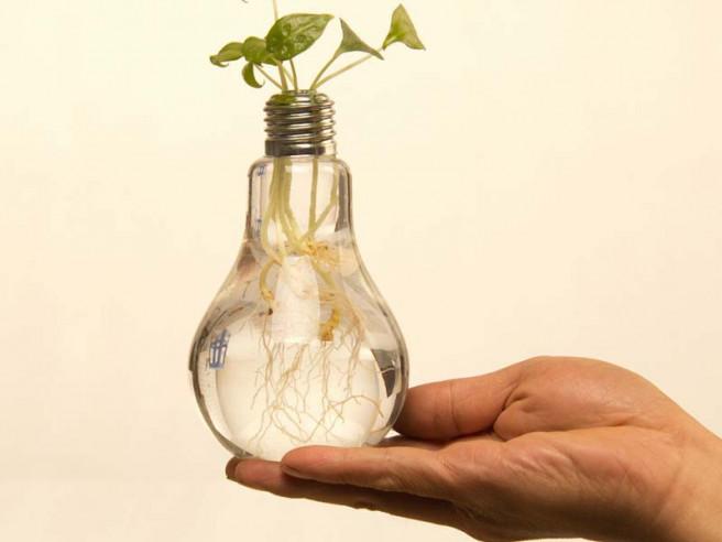 Light Bulb Vase (Set of 6)