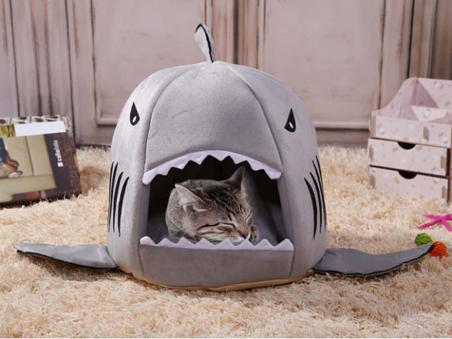 Haai Kattenmand