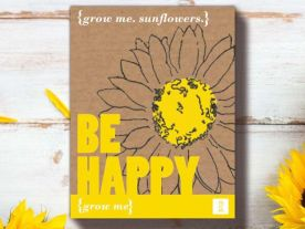 Be Happy Zonnebloem