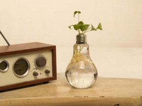 Light Bulb Vase (Set of 6)