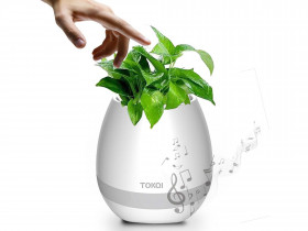 Magical Musical Flower Pot
